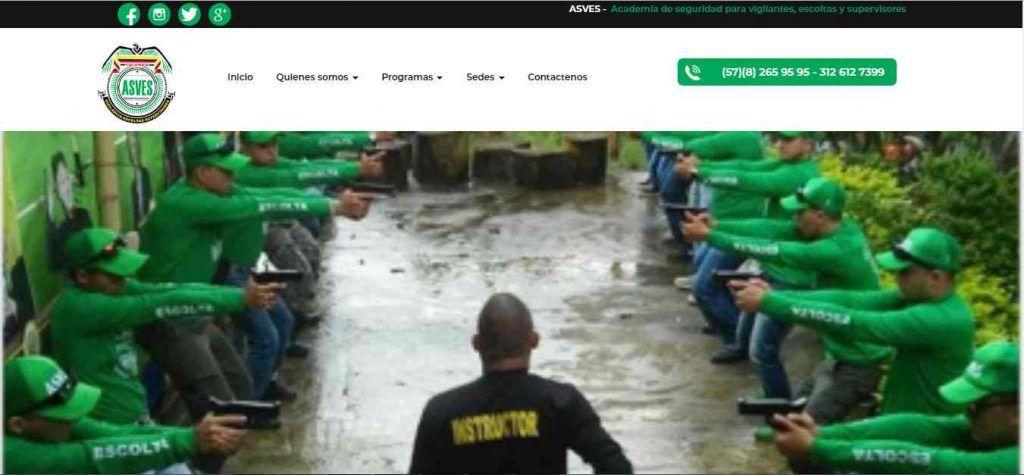 Portafolio seo web Ibague, asves.org